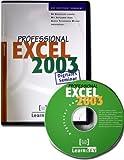 Excel 2003 Professional - Digitales Seminar/CD-ROM, An Beispielen lernen. Mit Aufgaben �ben. Durch Testfragen Wissen �berpr�fen Bild