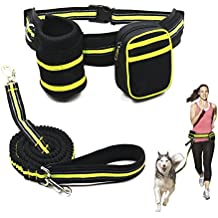 Ewolee Manos Libres Correa Perros Extensible 135-225cm, Correa de Perro para Correr con Correa Perro Cintura - Verde