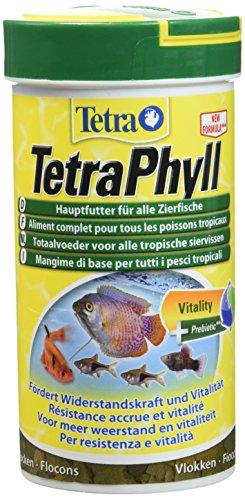 TetraPhyll (Hauptfutter für alle pflanzenfressenden Zierfische, mit lebenswichtigen Ballaststoffen plus Präbiotika), 250 ml Dose