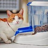 Ferplast 71970099W1 Futterspender ZENITH, für Katzen und Hunde, Maße: 29,2 x 20,2 x 28,8 cm, 3 Liter, weiss - 3