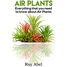 Air Plants: Everything that you need to know about Air Plants in a single book (air plants, air plant care, terrarium, air plant book) (English Edition)