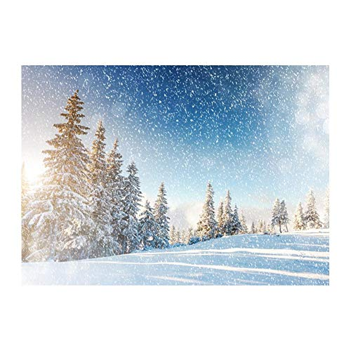 YouN Vinyl wasserdichte Wand Hintergrund Tuch Foto Hintergrund (Weihnachten Schnee Szene
