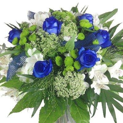 floristikvergleich.de Premium Blumenstrauß blau-weiß – Blumenversand Rosenbote