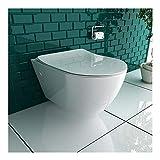 Spülrandloses Hänge-WC aus Sanitärkeramik mit Nanobeschichtung inkl. abnehmbarer WC-Sitz aus Duroplast | Mit SoftClose-Funktion | leise Absenkung | passend zu GEBERIT
