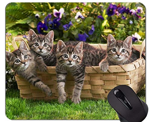 Mauspad mit genähtem Rand, Babytierkorb Kätzchen Animal Cute Spring Cat Rutschfeste Gummibasis Mousepad