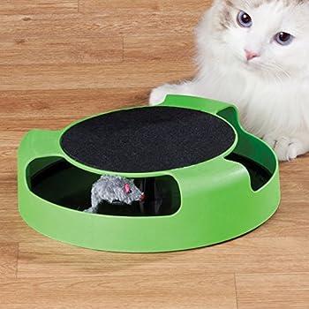 Prime Paws Meow chat chaton attraper la souris de jeu jouet interactif en peluche à griffe tapis Zizzi