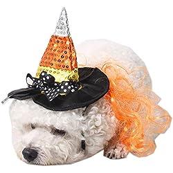 Disfraz de bruja para gatos y perros pequeños.