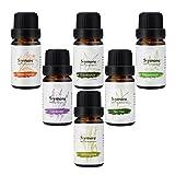 Nuova Generazione Umidificatori Aromaterapici naturali dell'olio essenziale Top 6Pcs --- Lavanda, arancia dolce, menta piperita, lemongrass, albero di tè, eucalipto. Migliore per il regalo immagine