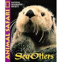 Animal Safari - Sea Otters