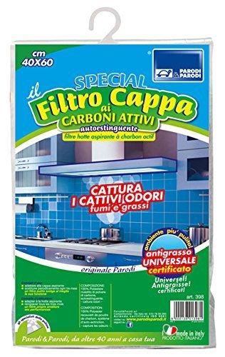 filtro de carbono activo de la campana de los filtros de carbón...