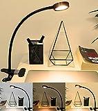 【Promotion】LED Klemmleuchte, Florally tragbare Schreibtischlampe, 2 Helligkeitsstufen, dimmbar Tischlampe, Flexibel Leselampe mit Hals und Stahl Clip, 1,5m USB Kabel, Warmweiß / Kaltweiß Farbe verschiedene Desktop-Licht, 8W