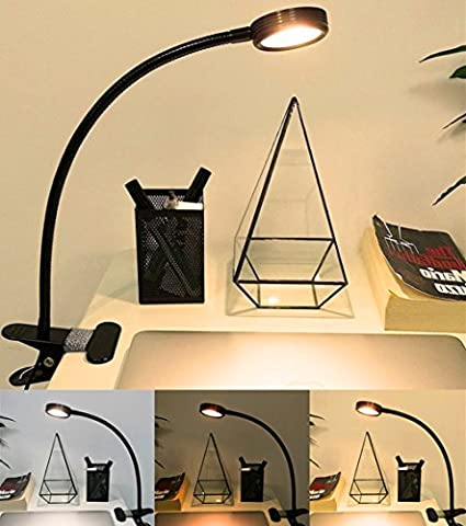 Clip On Light Desk Lamp, Florally Warm White / Cool White Colour Changeable Desktop Light Super Bright Portable Flexible Eye-care LED Stand USB Light Colour Changeable Night Light Clip On Book for Desk Table Bed Headboard Computers Desk Lamp Clamp On Desk Lamp Reading Light Craft Light, Music Stand Light, Book Reading Office Task Lighting USB Bedside Lamp (Adapter Not Included)