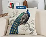 SQBZ Campagna Style Flower & Birds Pavone Linea di Cotone Cuscino Copertura 45 * 45 cm casa Biancheria da Letto di qualità Morbida Decorativa Federa, Copertura del Cuscino 016-45x45 cm