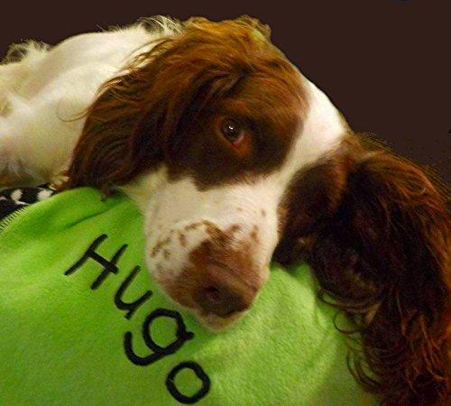 hundeinfo24.de Spoilt Rotten Pets Hundedecke mit Piratendesign, 70x90cm, personalisierbar