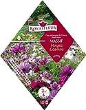 Royalfleur PFRK08695 Graines de Mélange de Fleurs mon Massif Magic Cosmos 3 m²