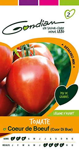 Gondian 154250 Semences - Tomate Coeur de Boeuf (Cuor Di Bue) - CP 2, Rouge, 1x8.1x16 cm