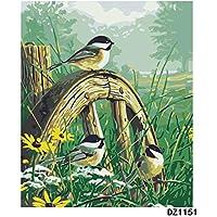 Pintar por Numeros Adultos DIY Kit Facil para Niños Lienzo Canción del pájaro de la mañana