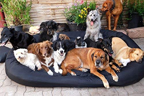 TIERLANDO® S7-03 SAMMY Hundesofa Hundebett aus fest gewebtem Polyester Gr. XXXXL 220 cm SCHWARZ
