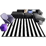 Gestreifte Teppich, Teetisch Schwarz Weiß Teppich Schlafzimmer Veranda Teppich Coffee Shop Bodenmatte | 80-140 cm in Länge (Farbe : B, größe : 140 * 200cm)