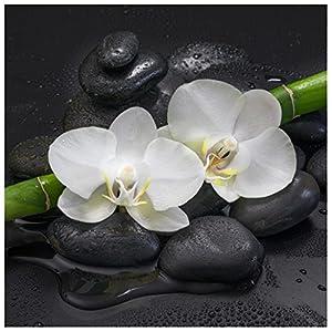 levandeo Glasbild 30 x 30 cm Wandbild Glas Orchideen Bambus Steine Dekoration Wanddeko Wellness Bild