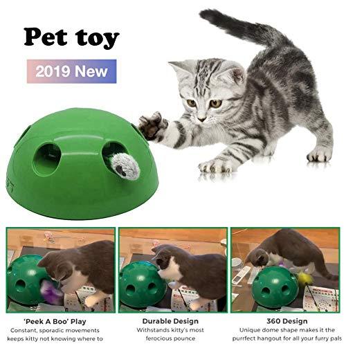 Katzenspielzeug Pet Play Toys, Peek a Boo Mouse Interaktives Katzenspielzeug Lustiges Karnevalsspiel Kitty Cat, Pet Entertainment Pet Exercise Chase-Spielzeug für Katzen und Hunde