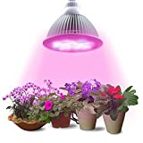 Keland LED Pflanzenlampen 9600lm Grow Lampe UV+ IR Gewächshaus Vollspektrum Pflanzen Veg & Blume Rot Blau 30/50/80W (E27,80W,120Led)