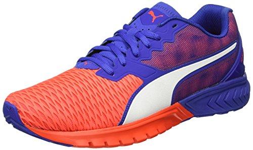 Puma Ignite Dual Wn's, Chaussures de Running Compétition Femme, Noir/Blanc