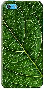 Kasemantra Betel Leaf Case For Apple iPhone 5C