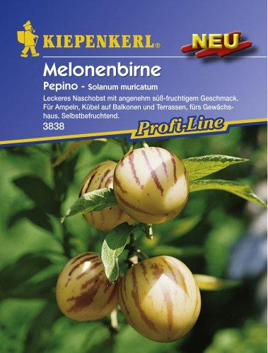 Melonenbirne Gemüsesamen