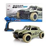Maximum RC Ferngesteuertes Auto für Kinder ab 8 - 4WD Short Course Truck - Wüstenbuggy mit proportionaler Beschleunigung und Allradantrieb