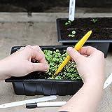 Thompson & Morgan langlebig wiederverwendbar Samen & Sämling Bepflanzung Komplett Kit 1 x Packung enthält 1 x Pflanzholz, 1 x Stift & 20 x weiß Pflanzen Etikette