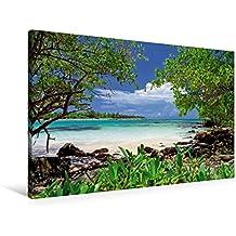 Premium Textil-Leinwand 90 cm x 60 cm quer, Türkisfarbenes Meer und saftig grüne Mangroven an der Küste von Yucatan | Wandbild, Bild auf Keilrahmen, ... Golf von Mexiko, Mexiko (CALVENDO Orte)