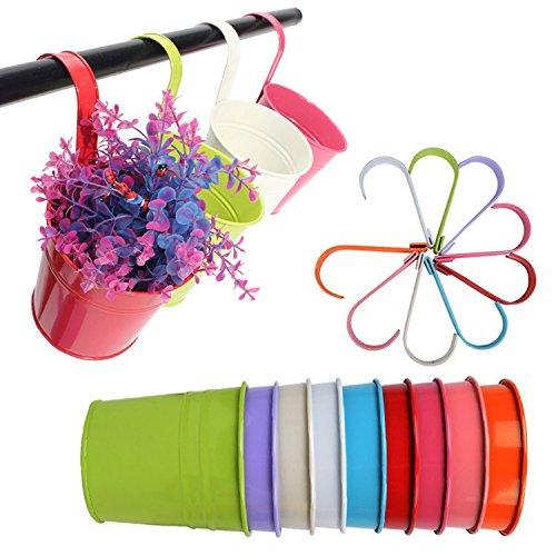 G2plus Lot de 10pots de fleurs à suspendre en fer avec trou d'évacuation, parfait pour le jardin ou la décoration intérieure