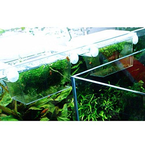 boite-de-reproduction-aquarium-pondoir-isoloir-ecloserie-double-couche