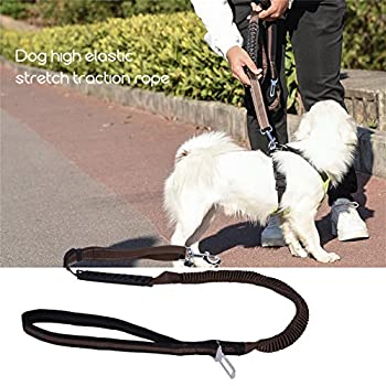 Ckeyin Reflektierende Haustier-leine, Hohe Elastische Hundeleine Haustier-autositz-sicherheitsgurt-einziehbare Tracti Auf Sicherheitsseil 6