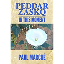 PEDDAR ZASKQ...IN THIS MOMENT (English Edition)