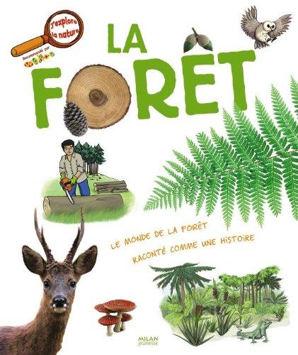 La forêt thumbnail