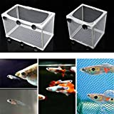 #9: CGT Aquarium Breeder for Guppy Isolation Box Suitable for Fish Tank (Large)