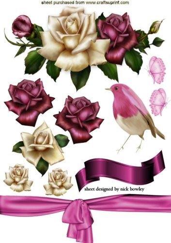 Splendido rosso e crema rose e uccellini scrapbook elementi A4by Nick Bowley