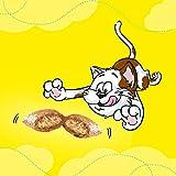 Dreamies Katzensnacks Pute, 6 Packungen (6 x 60 g) - 4