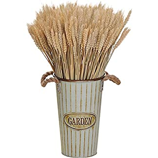 Ramo de flores de espigas de trigo seco natural, arreglo para decoración del hogar, 45cm de largo, color blanco/beige