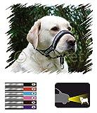 Hunde Erziehungshalsband FRS Reflektierend Antizug Halfter Erziehungsgeschirr (rosa, Gr.6)