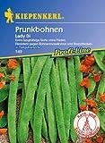 Sperli Gemüsesamen Prunkbohnen Lady Di