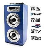 Reproductor JoyBox Bluetooth Azul Biwond