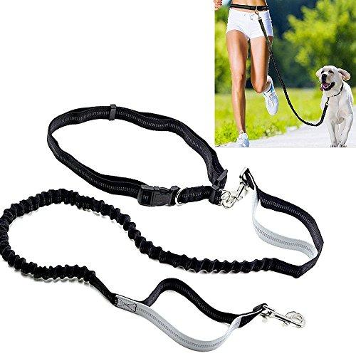 Hundeleine Bauchleine Elastische Nylonband Joggingleine perfekt mit freien Händen Laufen, Joggen, Wandern usw.