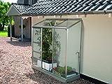 Anlehngewächshaus Ida - Ausführung: 1300 HKP 4 mm Alu, Fläche: ca. 1,3 m², mit 1 Dachfenster, Sockelmaß: 0,65 x 1,92 m