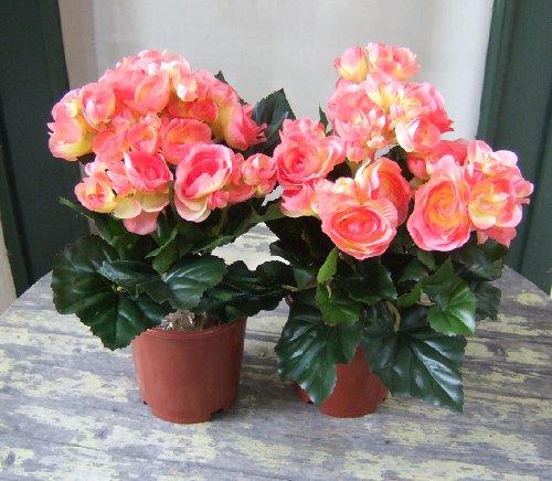 Licht & Grün Künstliche Begonien im Topf, 2 Stück mit rot-gelben Blüten