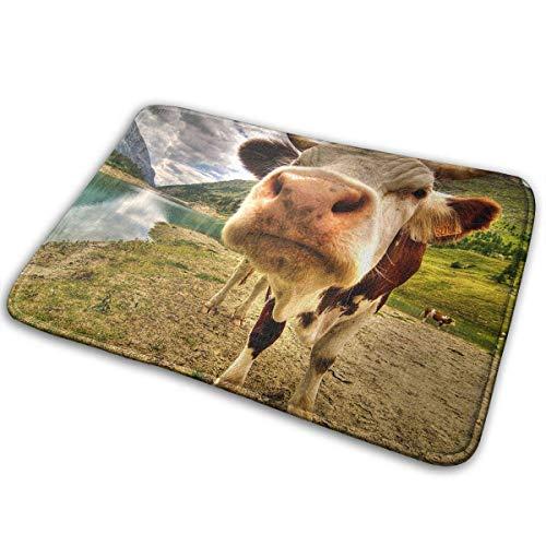 Uosliks Montañas Vacas Felpudos hogar Alfombrillas