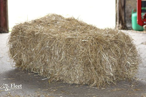 hay-bale-for-horses-approx-20kg-100x50x40cm-boxed-free-pp