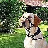 Hemore Hundegeschirr mit Anti-Stopp, zum Kauen, mit Halfter für sanfte Kontrolle, Nylon, kein Ziehen, schmerzfrei, für Hunde, Schwarz S